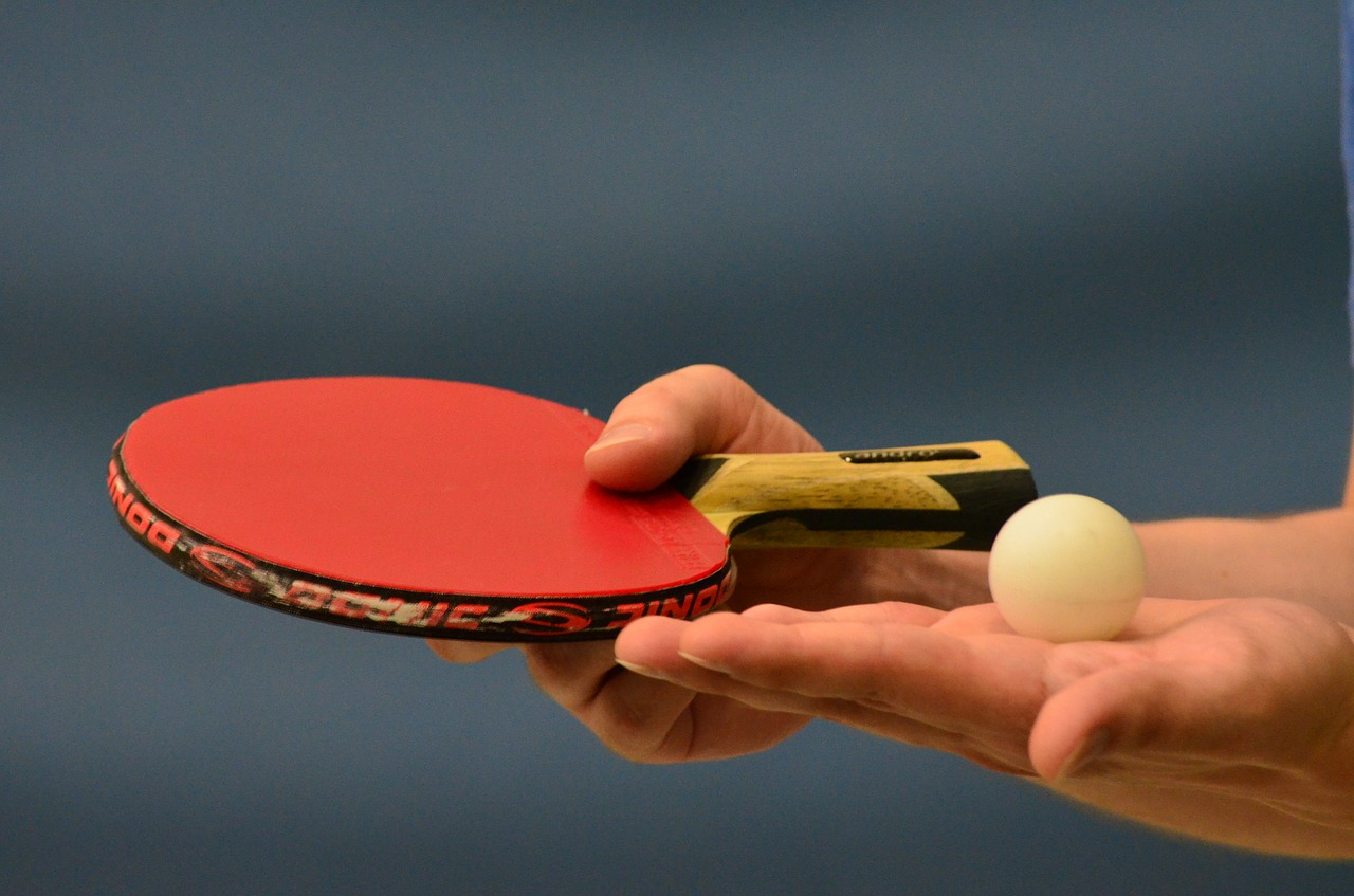 Table Tennis Ping Pong  - Huskyherz / Pixabay